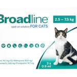 ブロードラインの使い方 – 有効成分と対象寄生虫を解説!